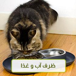 ظرف آب و غذا گربه