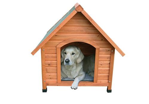 خانه سگ