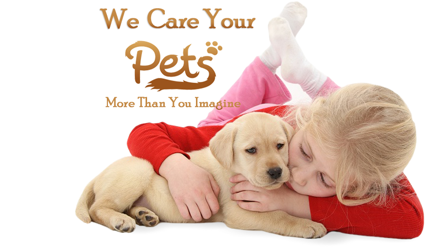 we care your pets
