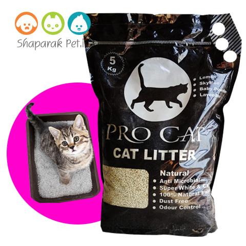 خاک گربه