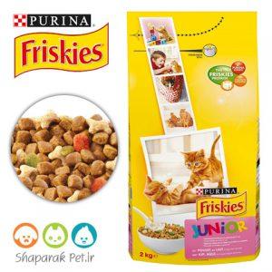 غذای بچه گربه فریسکیس