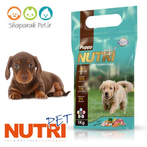 غذای سگ نوتری