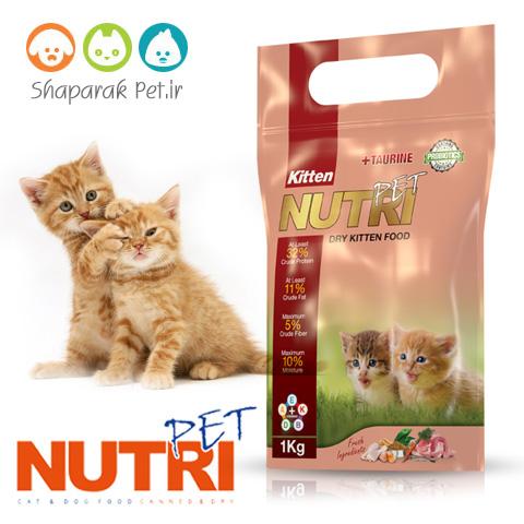 غذای بچه گربه نوتری