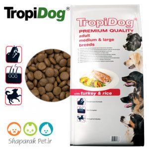 غذای سگ نژاد متوسط