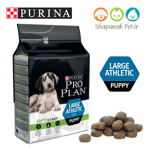 غذای خشک سگ پروپلن