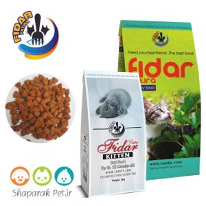 غذای بچه گربه فیدار