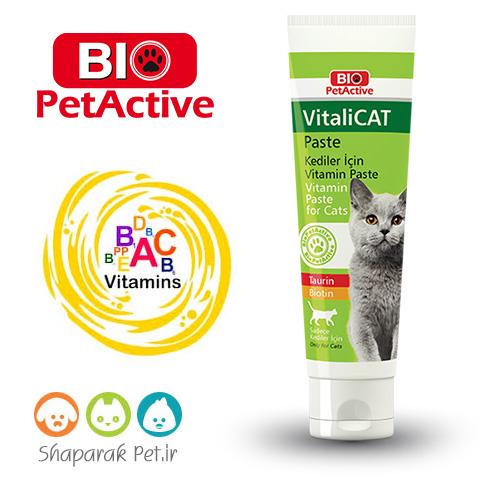 خمیر مولتی ویتامین گربه بیو