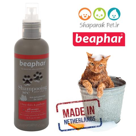 شامپو خشک بدون آب برای موی نرم گربه